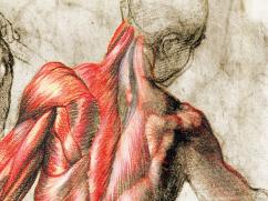 curso cadaveres intervencionismo dolor