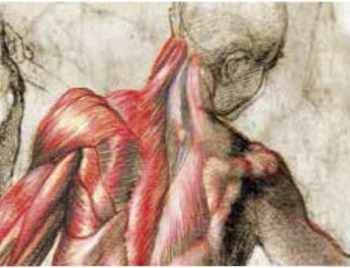 Precurso de Neuroestimulación